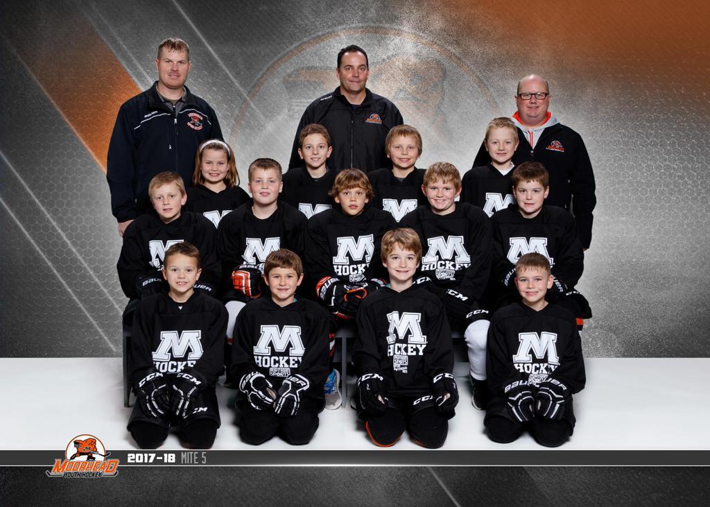 Fargo squirt hockey turnering