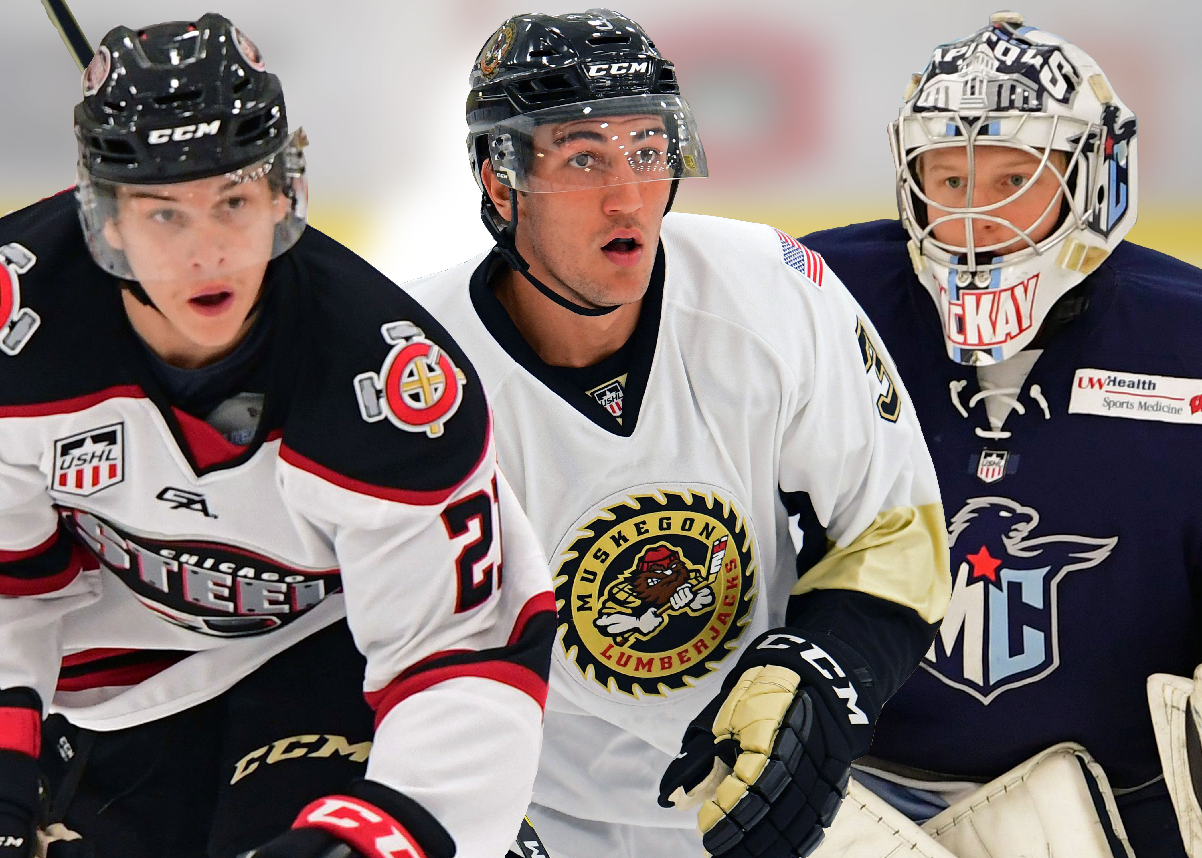 USHL: Players Of The Week - Week 15, 2017-18