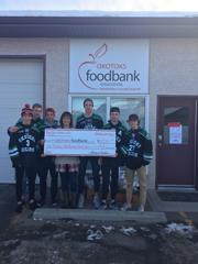 Food bank donation small