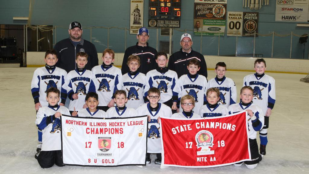 Chicago Bulldogs Mite 2009s are the 2017-2018 Mite AA State Championship AND 2017-2018 NIHL Gold 8U Champions!