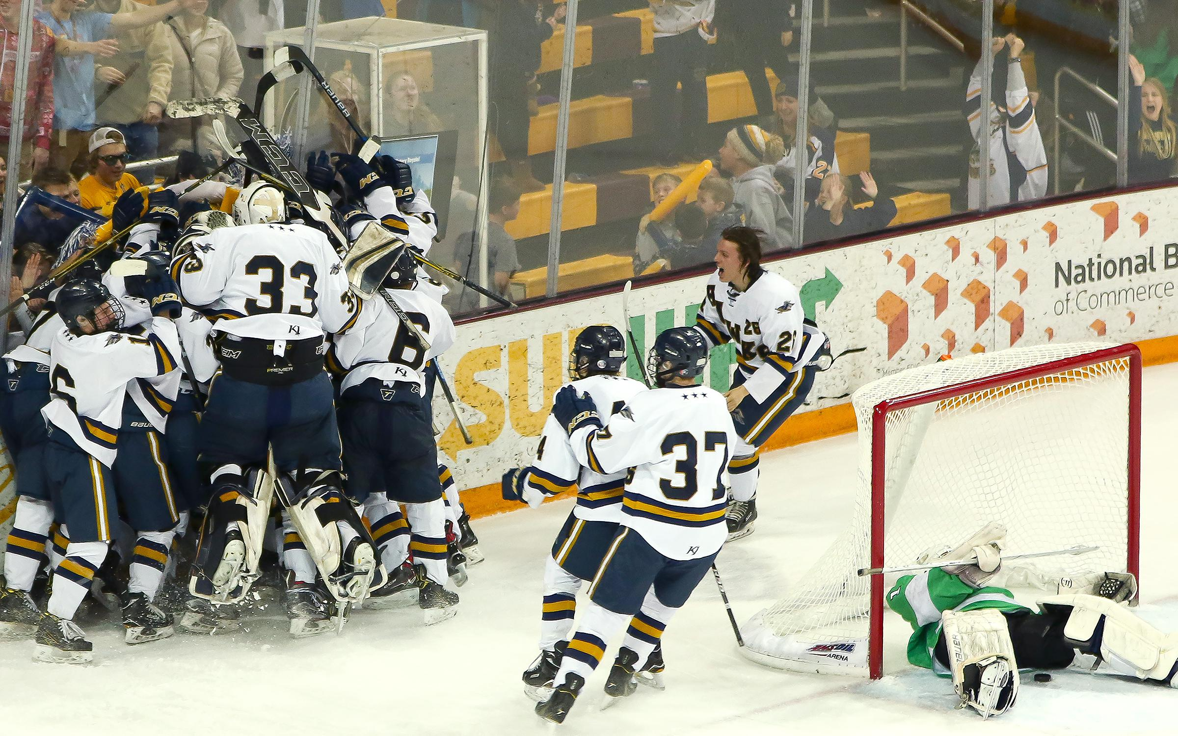 Hermantown celebrates after Tyler Watkins scored the game-winning goal in double overtime of the Class 1A, Section 7 championship at AMSOIL Arena on Wednesday. The Hawks defeated Greenway 5-4. Photo by Dave Harwig, Viewthroughmylens.net