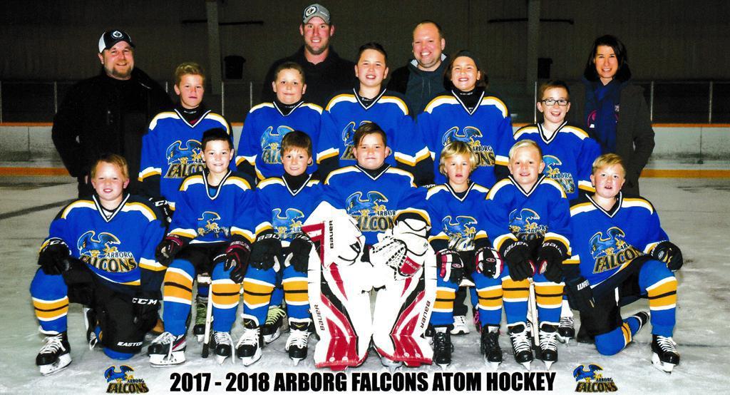 Arborg Falcons Atoms 2017-2018