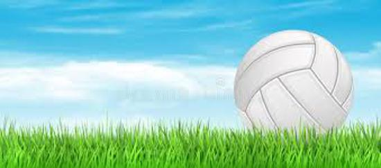 Coming Soon - OUTDOOR  Grass Volleyball Clinics