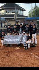 2019 11U Perfect Game - Spring Fling Silver Bracket Champs!