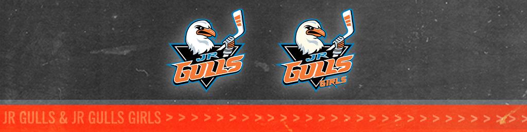 Jr Gulls Logo Banner