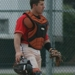 Dback catcher small
