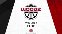 Woodzelite medium