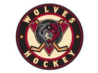 Wlvs logo  medium
