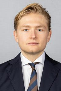 Persson ludvig medium