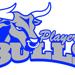 Bulls small