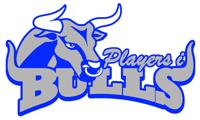 Bulls medium