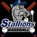 Stallions bats logo 1  small small