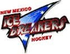 Nm ice breakers logo element view
