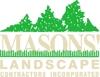 Mason s element view