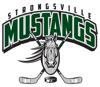 Sponsored by Strongsville Youth Hockey Club (Ohio)