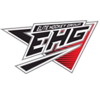 Elite hockey group element view