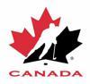 Hockey canada logo element view