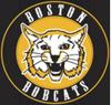 Boston bobcats element view