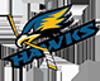 Sponsored by Dix Hills Hawks