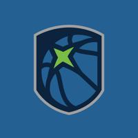 Timberwolves & Lynx Basketball Academy Logo