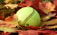 softball on fall leaves