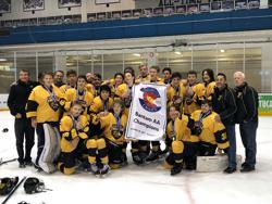 Custom hockey jerseys and custom hockey apparel Tigers Bantam AA part of CSAHA