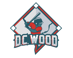 DC Wood Logo